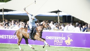 Chestertons Polo in the Park Family Day Out