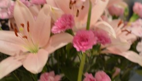 Flower bouquet pink