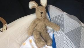 Cuddly Rabbit Senger Tierpuppen