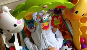 Fisher-Price Newborn to Toddler Gym