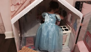 Rose Petal Cottage Role Play