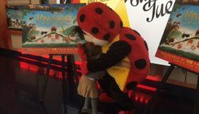 Minuscule Ladybird