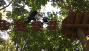 Go Ape Chessington Tree Top Adventure Junior