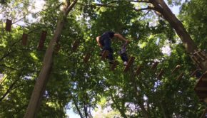 Go Ape Tree Top Adventure Junior Chessington