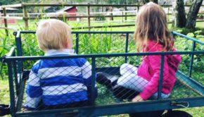 Wool Joggers Farm Holiday