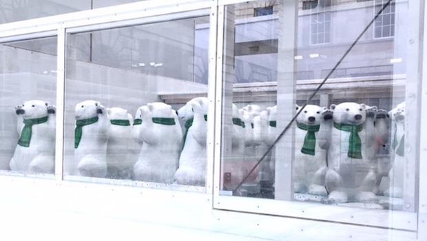 polar-cub-club-somerset-house