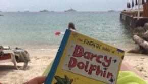 Darcy Dolphin