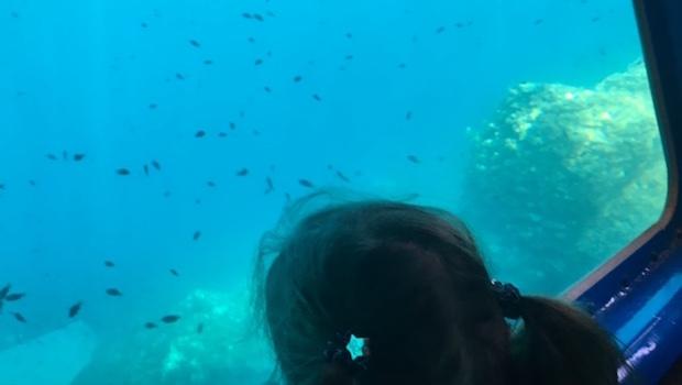 Visiobulle Boat Trip Underwater