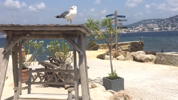 La Guerite Travel Holiday Cannes